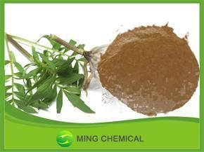 China Valerian root Extract for sleep/Valeric Acid 0.4% on sale