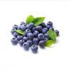 China Blueberry Fruit Juice Powder for sale