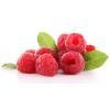 China Raspberry Ketone for sale
