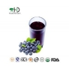 China Blueberry Concentrate juice for sale