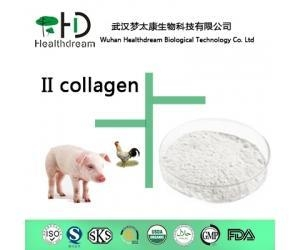 China Collagen II wholesale