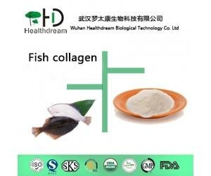 China Fish Collagen wholesale