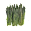 China Tea Tai Ping Hou Kui Green Tea for sale