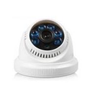 HL3011 IR Vandal proof Camera