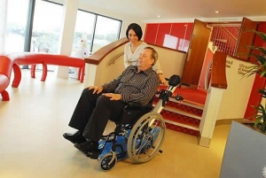 China Wheelchair Carrier Summary on sale