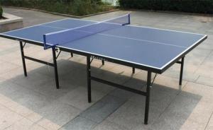 China Pvc foam board ping-pong table BDPVC201474 on sale