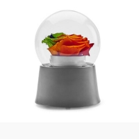 Colorful Flowers Music Boxes