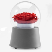Red Rose Music Boxes