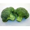 China Broccoli Powder for sale