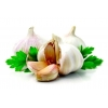 China Garlic Powder for sale