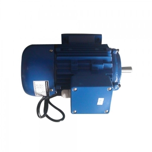 Quality Electric motor 3 phase double shaft for sale