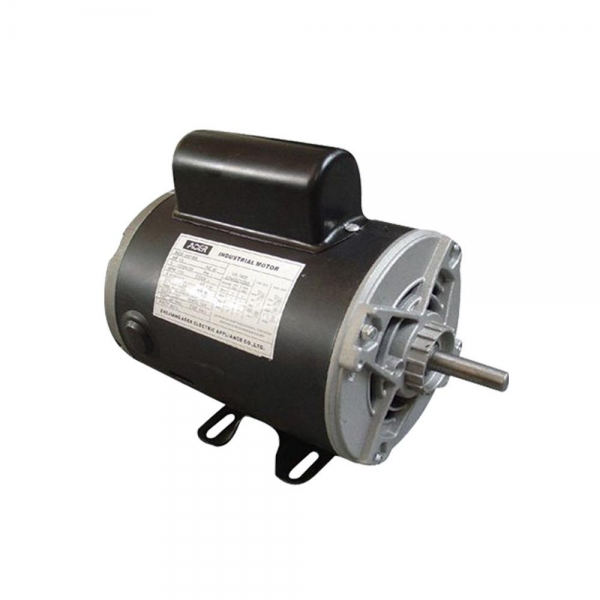 China electric motor 250w reversible high output