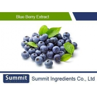 China Blue Berry Extract 25% anthocyanidins,anthocyanoside,Vaccinium SPP on sale