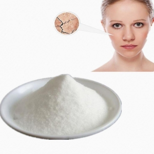 China Best Quality Low Molecular Weight HA Cosmetic Grade Hyaluronic Acid Sodium Hyaluronate Powder on sale