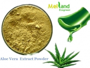 China 100% PURe ALOE Vera Natural Leaf Gel Extract Powder Extreme Potency on sale