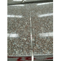 Standard Wholesale Red Granite G664 Big Slab Stone for Counter Top and Vanity Top By Prefab