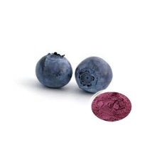 100% Natural Bilberry Extract / Blueberry Extract / Anthocyanidins / Fruit powder 333