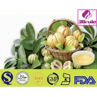 First Class High Quantity And Natural Garcinia Cambogia E...