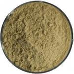GREEN COFFEE BEAN EXTRACT: CHLOROGENIC ACID