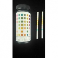 Urine Test Strip 10 Parameters 100Kit/Carton