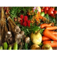 Agriculture Agricultural Micronutrients  - Global Market Outlook (2016-2022)