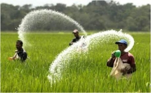 China Agriculture Agricultural Disinfectants - Global Market Outlook (2016-2022) on sale