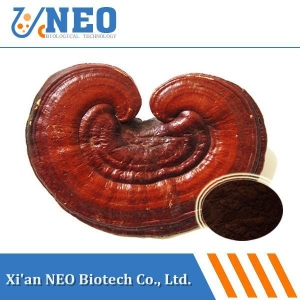 China Reishi Mushroom Extract/Lingzhi mushroom Extract/Ganoderma lucidum Extract on sale