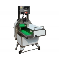 China automatic vegetables slicer on sale