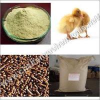 Dry Yeast Powder
