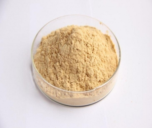 China Sugar Substitute Luo Han Guo Extract 80%Mogrosides/ Monk Furit 25% MogrosideV on sale