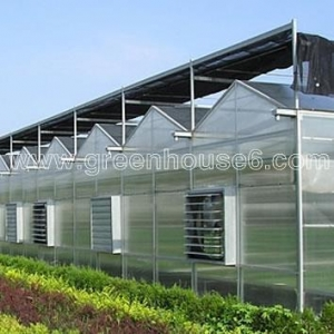 China Solid PC Sheet Cover Material Industrial Polycarbonate Greenhouse on sale