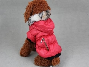 China Pets Classic Winter Coat-Red PTS-034B on sale