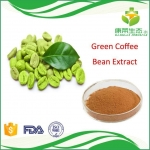 Chinese Manufacturer Supply Green Coffee Bean/Coffea L. Extract Chlorogenic Acid forLosing Weight