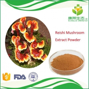 China High Quality Reishi Mushroom Extract Powder with Free Sample on sale