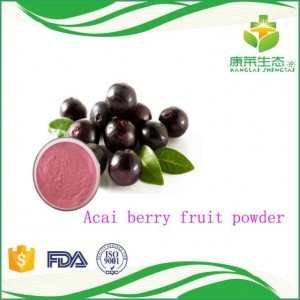 China High Quality Organic Acai Berry Fruit Juice Powder Good for Eyesight and Good for Health on sale