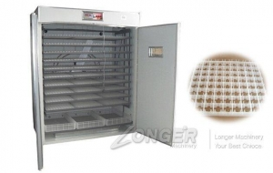China Commercial Quail Egg Incubator on sale