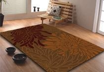 China Area Rugs on sale