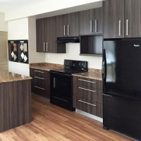 Air-Compressors Villa / Hotel Solid Wood Kitchen Cabinets Silestone Benchtop With Kitchen Appliance