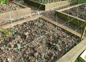 China Climbing Plant Netting on sale