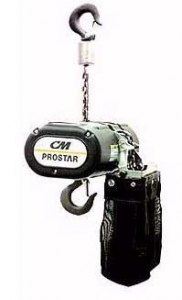China TOWERS & LIFTING CM Chain Hoists on sale