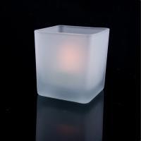 LED Decorative Lights SA55