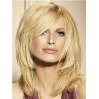 China Straight Lace Front Human Hair Wigs on sale