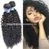 China Real Human Hair Wholesale Virgin Brazilian kinky curly Remy Hair Weave for sale