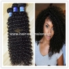 China 100 kinky curly hair fast shipping top selling products brazilian hair for sale