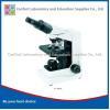 China Microscope MS012Wide Field Eyepiece Binocular advance Biological Microscope N-400M for sale