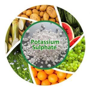 China Potash Fertilizer 0-0-51 White Granular Or Powder Potassium Sulphate Price on sale