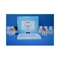 Chemicals Sarafloxacin ELISA Test Kit