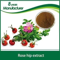 Rose hip powder ISO Certificated Rose Hips Extract 10:1Supplied By 3W Exporter