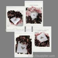 """8""""*10""""Leggy Horse Home Decoration Acrylic PU Photo /Picture Frame (Magical Moudle)"""