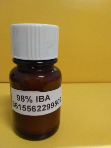 China plant Growth Regulator 3-indolebutyric acid(IBA) on sale